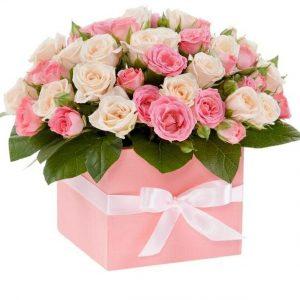 Trandafiri C105