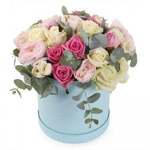 Trandafiri C108