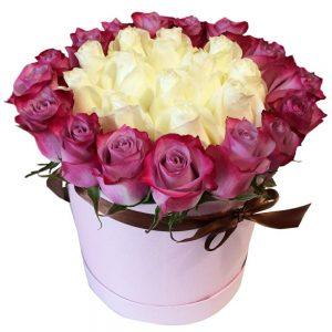 Trandafiri C113