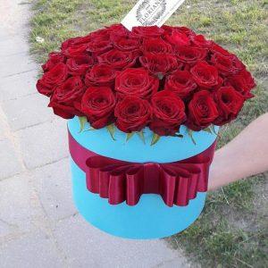 Trandafiri C114