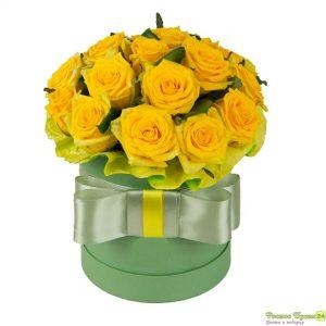 Trandafiri C115