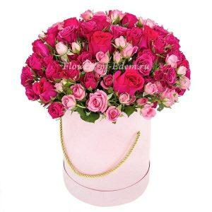 Trandafiri C116