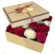 Trandafiri C126
