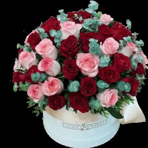 Trandafiri C127