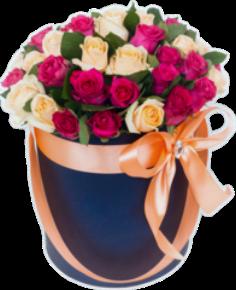 Trandafiri C129