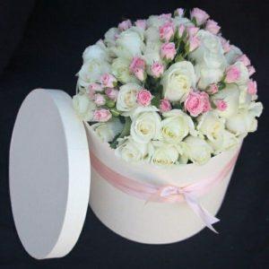 Trandafiri C150