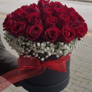 Trandafiri C163